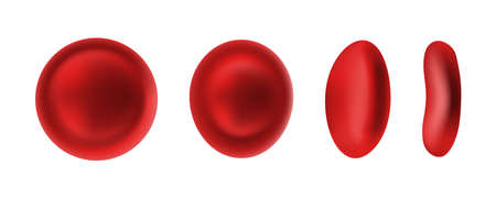Erythrocyte or red blood cells isolated on white background for sprite sheet animation. 3d realistic vector picture of hemoglobin for hematology, microbiology health human illustration Illustration
