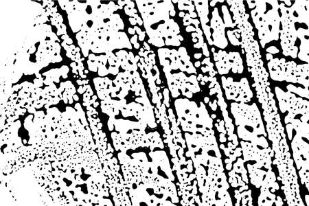 Grunge vector texture of spilled sauce or smeared black paint. Liquid ink pattern with surface tension effect