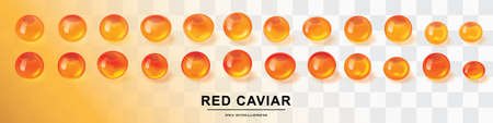 Raw red caviar collection isolated. Salted or fresh salmon fish eggs, trout roe 3d realistic vector illustration Çizim