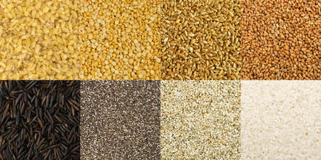 Big collection of different cereals and edible seeds. Seamless pattern of dried grains or mosaic texture with groats