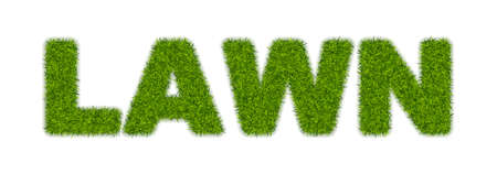Fake green grass word LAWN. Business concept with 3d vector turf letters isolated Imagens
