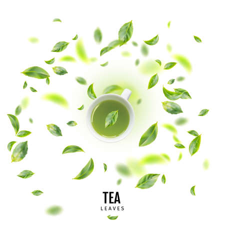 Healthy Light Green Tea Cup with Fresh Green Leaves Flat Lay Imagens
