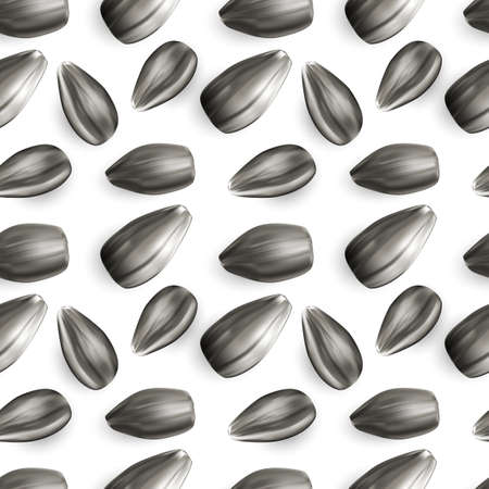 Natural uncooked black sunflower seeds for texture or background