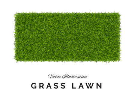 Fake green grass  square background. Imagens