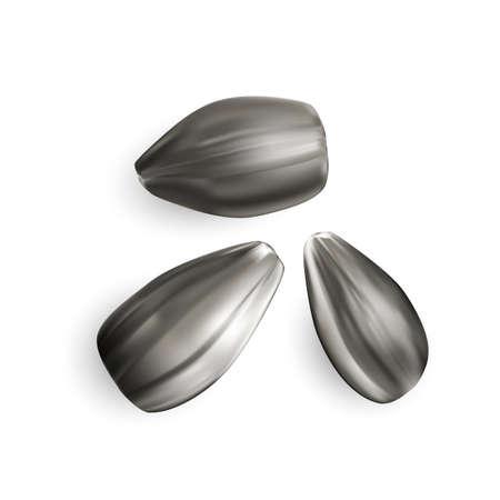 Black sunflower seeds isolated on white background. Imagens