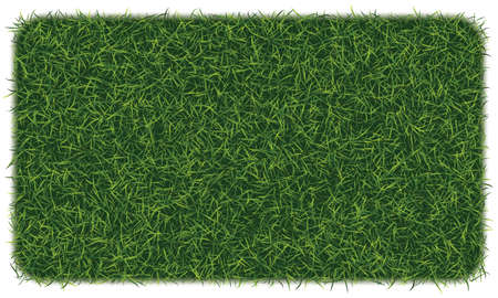 Fake green grass square background.