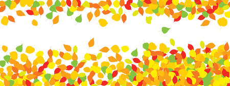 Colorful autumn leaves or foliage silhouettes pattern on white background. Imagens
