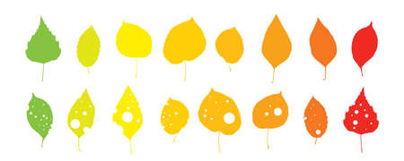 Leaf Silhouettes in Trendy Colors Isolated on White Background.