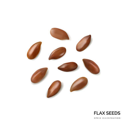Dry Raw Unpeeled Flax Seeds Isolated on White Background Top View. Uncooked Hulls Linseeds 3d Realistic Vector Set Ilustração