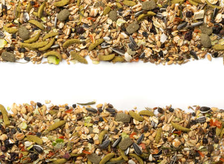Dry rodent food mix frame isolated on white background. Balanced hamster feed mockup with cereals, seeds, peas, dried vegetables 스톡 콘텐츠