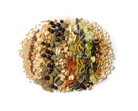 Dry rodent food mix for mouse, rabbit or degu isolated on white background top view. Balanced hamster feed with cereals, seeds, peas, dried vegetables 스톡 콘텐츠