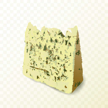 Triangle moldy cheese piece vector illustration. Wedge of gorgonzola, neufchatel or danablue cheese with mold close up