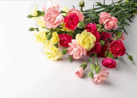 Fresh carnation flower bouquet closeup on white background. Yellow, pink and red flowers of dianthus or schabaud for gift card design