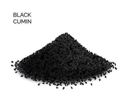 Pile of black cumin or black caraway spicy seeds isolated on white background top view. Vector illustration of nigella sativa also known as nigella, kalojeere and kalonji Ilustracje wektorowe