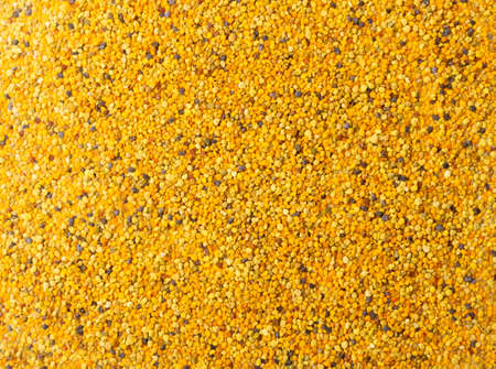 Bee pollen or perga textured background top view. Raw brown, yellow, orange and blue flower pollen grains or bee bread texture pattern. Healthy food supplement