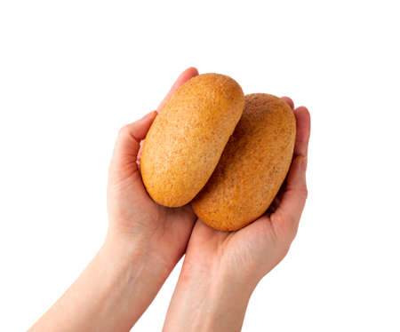 Hand holding round wheat buns isolated on white background. Brown bun bread in hands