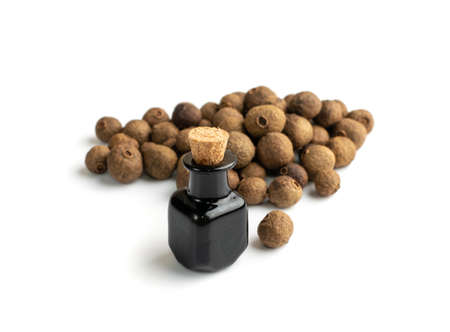 Allspice pepper seeds essential oil in small vintage bottle isolated. Jamaica peppercorns and essential oil in medicine jar. Myrtle pepper essence, tincture, extract or infusion Banque d'images
