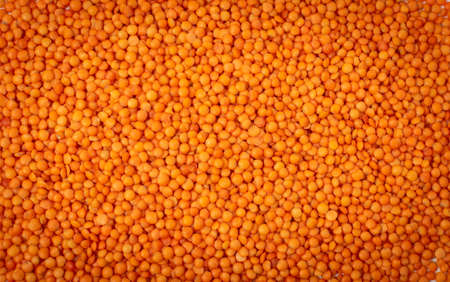 Red lentils texture background. Dry orange lentil grains pattern, dal wallpaper, raw daal with copy space, dhal, masoor, Lens culinaris or Lens esculenta flat lay and top view