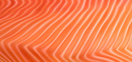 Natural Salmon Fillet Texture Background. Fresh Red Fish Pattern, Trout Realistic 3d Vector Illustration Stock Illustratie