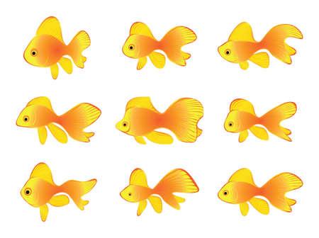 Gold fishes Vector Illustration Set. Various Goldfishes Icon Collection, Cartoon Goldfish Isolated on White Background