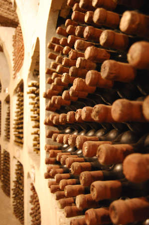 old wine bottles laying in winery photo
