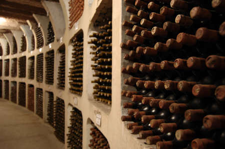 moldova: old wine bottles laying in racks in cellar