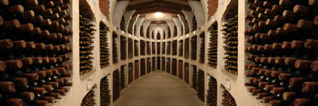 old wine bottles laying in racks in cellar photo