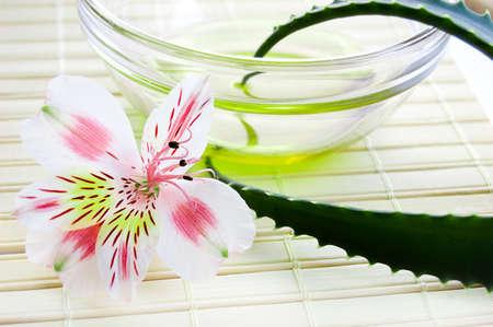 Aloe vera leaf and oil, spa concept Stock Photo - 6468327