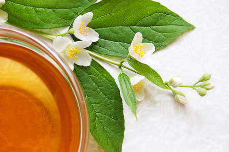 Cup of green tea with jasmine Stock Photo - 7089112