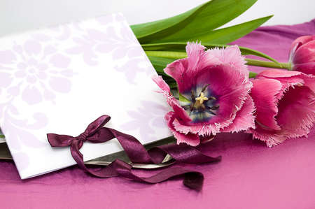Greeting card with violet tulips and ribbon Stock Photo - 9071220