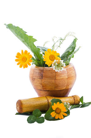 Mortar with herbs and marigolds isolated on white Stock Photo - 9973313