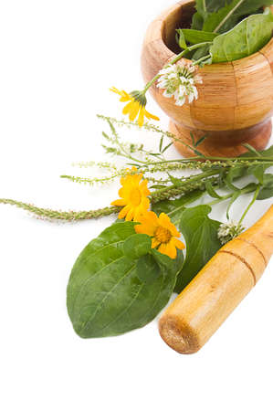 Mortar with herbs and marigolds isolated on white Stock Photo - 9973314