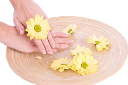 Woman hands and flower in bucket of water isolated Stock Photo - 10697819