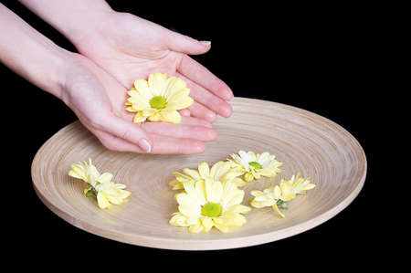 Woman hands and flower in bucket of water isolated on black photo