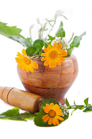 Mortar with herbs and marigolds isolated on white Stock Photo - 12511414