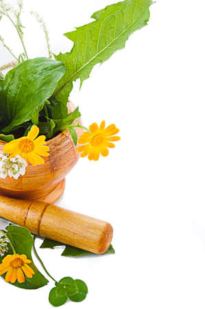 Mortar with herbs and marigolds isolated on white photo