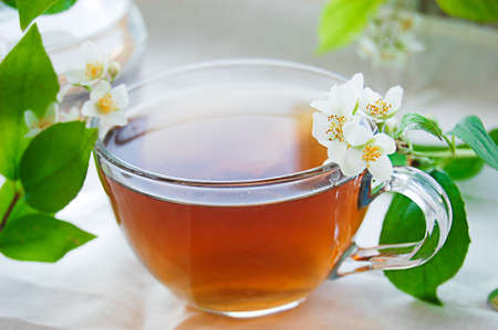 Cup of green tea with jasmineover light back Stock Photo - 12511410