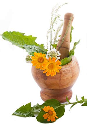 Mortar with herbs and marigolds over white Stock Photo - 12511376