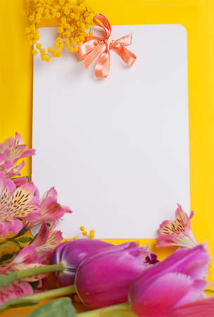 Decorative card with mimosa and tulips on white photo