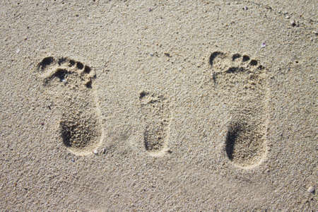 Three family footprints in sand on beach photo