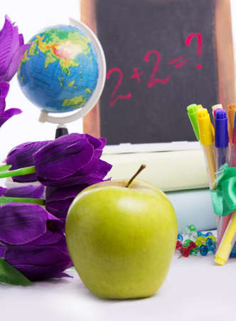 Back to school concept with flowers and apple isolated photo