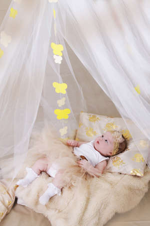 Adorable newaborn girl in cream crib and canopy photo