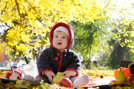 Cute baby girl sitting among autumn leaves photo