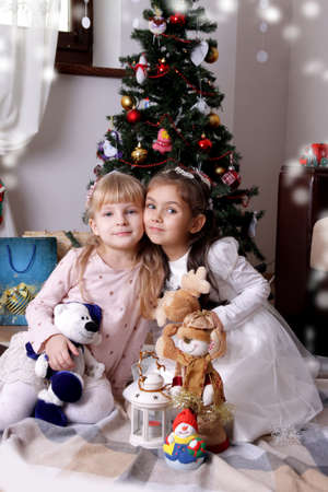cheek: Two lovely girls sitting cheek to cheek under Christmas tree Stock Photo