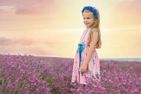 Girl among lavender fields at sunset photo