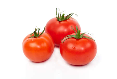 Red tomatoes against the white background.