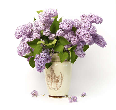Bouquet of lilac in the old vase. Stock Photo