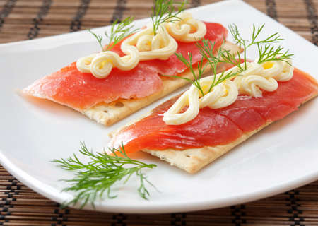 Salmon with the crackers and the verdure
