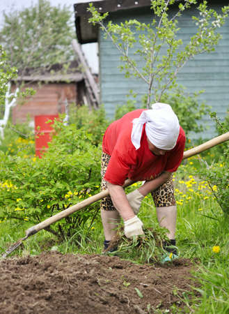 A woman working in the garden