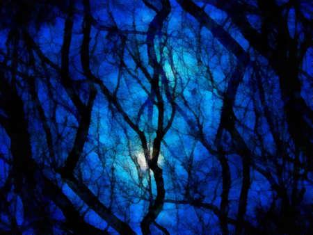 Night landscape background photo